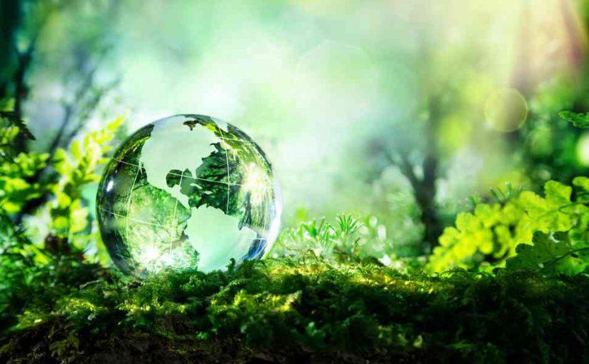 L'écologie, un engagement au Rialto